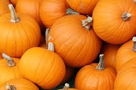 Salute e benessere in autunno:ecco i cibi giusti